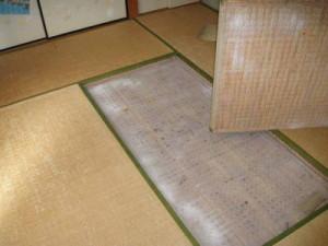 既存畳の引き上げ